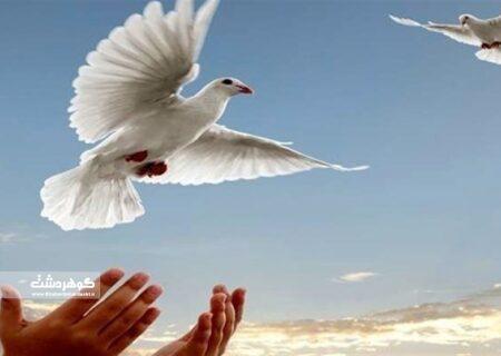 ۱۵۵ زندانی جرائم غیرعمد با کمک خیرین فردیس در سال ۹۹ آزاد شدند