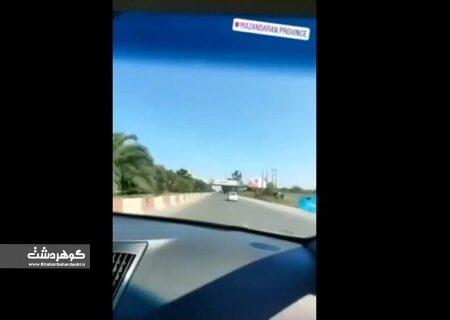 ورود دادگستری البرز به استفاده از خودروی شهرداری کرج توسط پسر رئیس شورای شهر